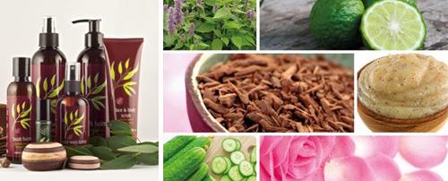 DeVita Beauty & Aesthetics - Waxing Treatments - Waxing Outback Organics